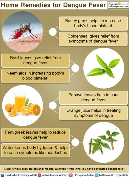 Home Remedies For Dengue Fever Urbanatural